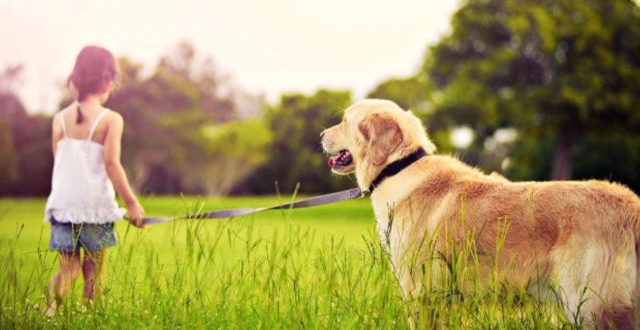 Εντοπισμός Θέσης Προσώπων / Ζώων